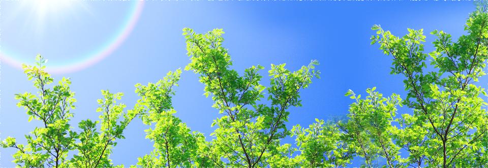「素材」「表示」「デザイン」にこだわる 樹木ラベル・名札、植物名ラベルのことなら お任せください