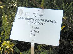 浜名湖花博クイズ式看板